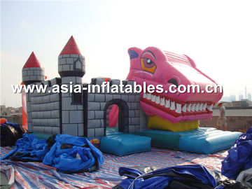 চীন 2014 high quality jumping castles inflatables combo কারখানা