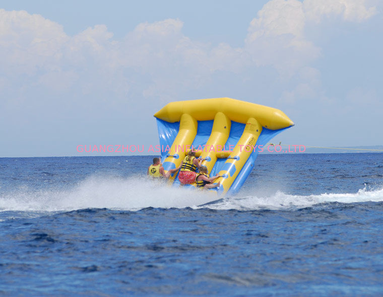 Funny Air Sealed Inflatable Flying Fish Tube with CE / UL Certificate সরবরাহকারী